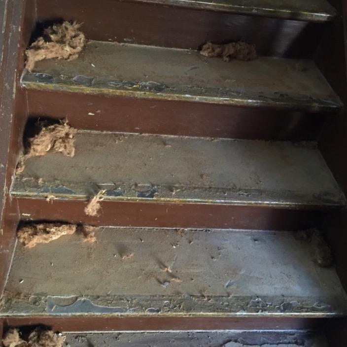 Fußbodenverlegung Mutsch Treppensanierung